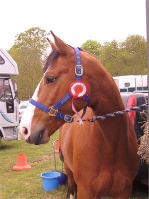 Bert winning first for Tracey
