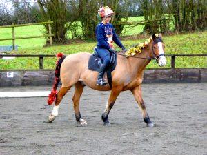 Handy Rider at Pipers Farm